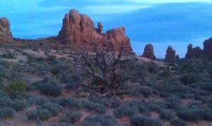 One more from Arches National Park