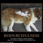 Resources vs. Resourcefulness… about being resourceful